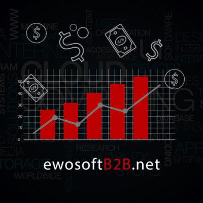 ewosoftB2B.net